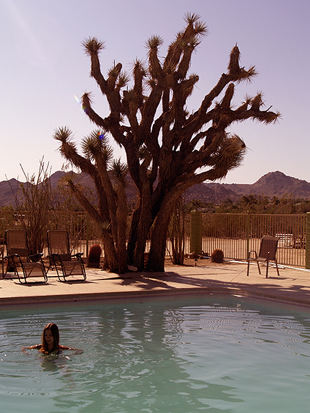 The Joshua Tree Inn, Joshua Tree